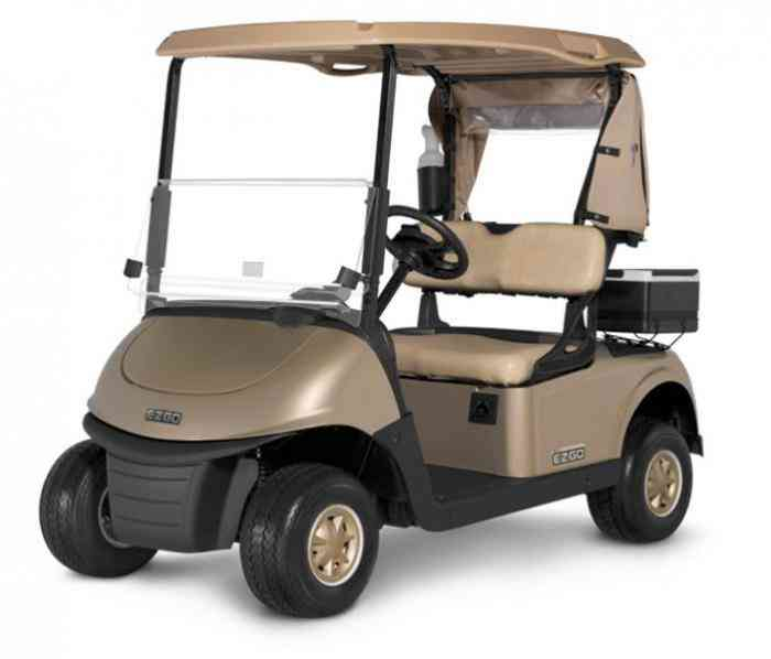 RXV Golf Buggy
